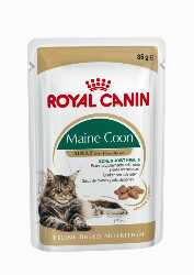 ROYAL CANIN WET MAINE COON 12x85GR